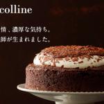 ルタオのチョコレートケーキ(ベルコリーヌ)